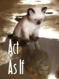 Acting As If - a law of attraction process