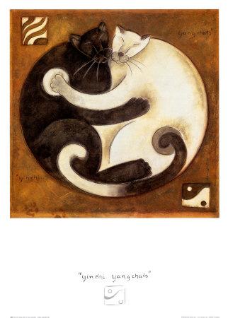 yin-yang-cats.jpg
