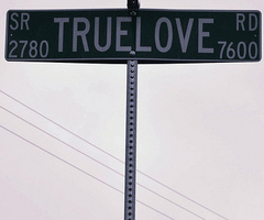 true love sign