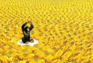 The Trick to Manifesting Abundance