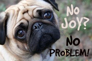 No Joy? No Problem!