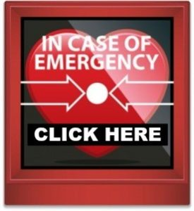 In Case Of Vibrational Emergency