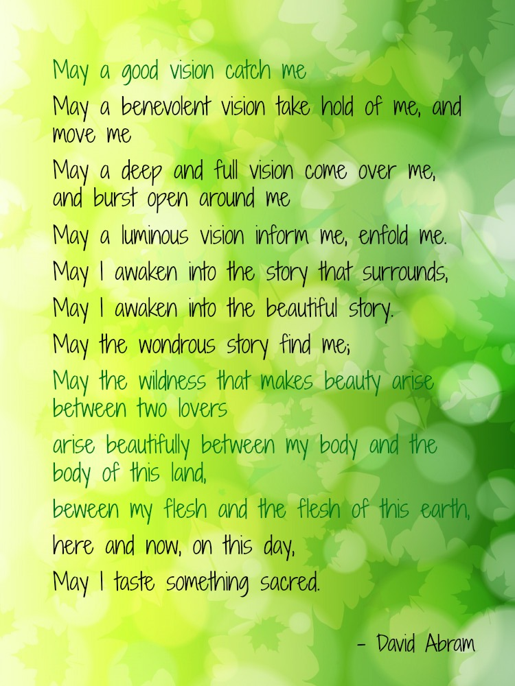 David Abram Prayer