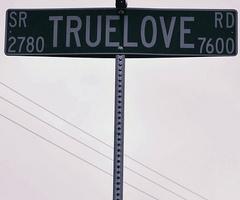 true love sign